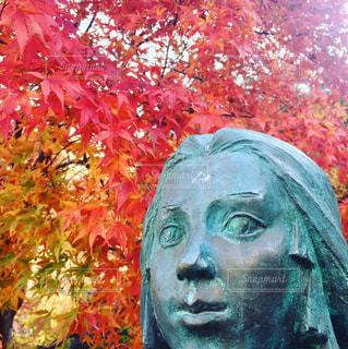 温泉,紅葉,ねね