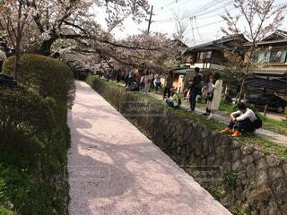 未舗装の道路を歩いて人々 のグループの写真・画像素材[1122522]