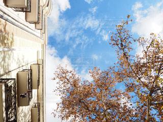 空の写真・画像素材[1095013]