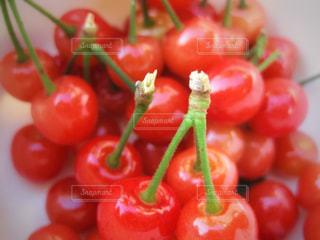 赤,フルーツ,さくらんぼ,可愛い,チェリー,もぎたて