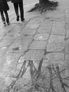 雨上がりのカップルの写真・画像素材[827706]