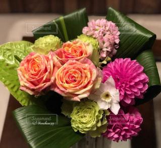 珍しいバラの花束の写真・画像素材[3100989]