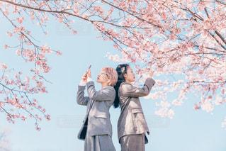 春を映しての写真・画像素材[3068724]