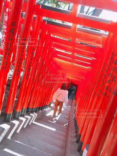 赤シャツの男の写真・画像素材[967824]