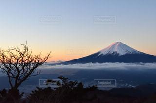 富士山の写真・画像素材[935281]