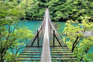 水の体の上の橋の写真・画像素材[1013693]