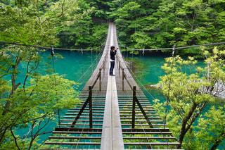 水の体の上の橋の写真・画像素材[1013709]