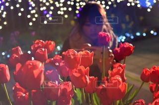 赤い花の人の写真・画像素材[1680243]