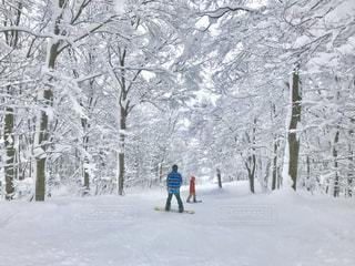 雪に覆われた斜面をスキーに乗る人の写真・画像素材[1732284]