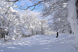 雪をスノーボードに乗る男覆われた斜面の写真・画像素材[1732303]
