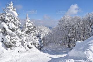 雪に覆われた山の写真・画像素材[1732327]