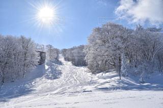 雪の上に乗って男覆われた斜面の写真・画像素材[1732331]