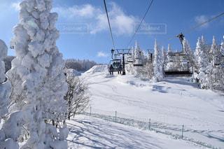 雪に覆われた斜面をスキーに乗る男の写真・画像素材[1732342]
