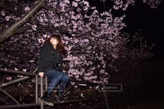 早めの桜との写真・画像素材[1749906]