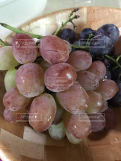 食べ物,フルーツ,果物,果実,葡萄,おいしい,新鮮,食材,フレッシュ,ぶどう,巨峰
