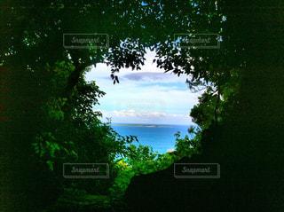 神の島が見えるの写真・画像素材[911426]