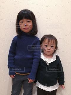 ネコちゃん達の写真・画像素材[2510470]