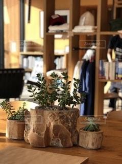 テーブルの上の花瓶の写真・画像素材[2723375]