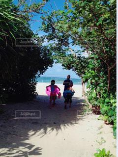 海,夏,ビーチ,親子,沖縄,旅行,うきわ