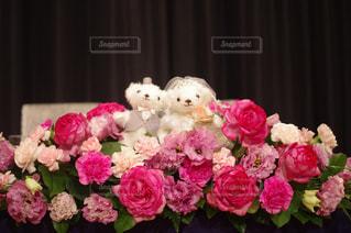 近くの花のアップの写真・画像素材[848283]