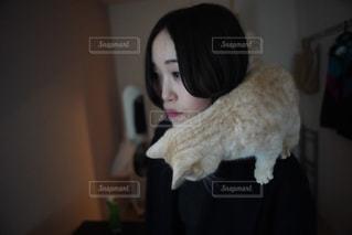 猫を抱いている人の写真・画像素材[2972920]
