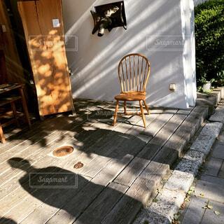 木漏れ日空間の椅子の写真・画像素材[4516982]