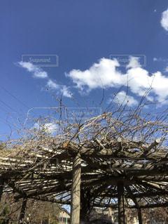 空の写真・画像素材[2013652]