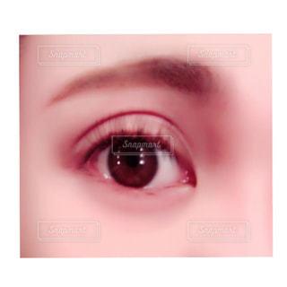 目。の写真・画像素材[827965]