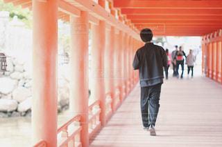 男性,神社,赤,後ろ姿,宮島