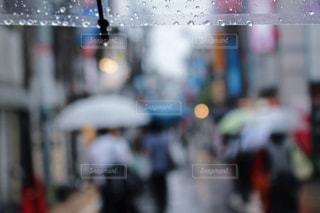 雨の写真・画像素材[829407]