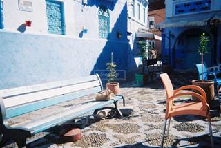 猫,自然,空,屋外,白,青,昼寝,日光,マーケット,フィルム,モロッコ,通り,フィルム写真,フィルムフォト
