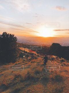 夕日に向かって駆け抜けるの写真・画像素材[891071]