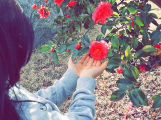 花を持っている人 - No.901094
