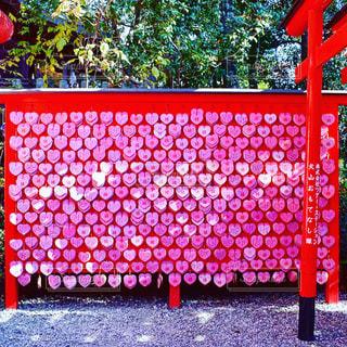カメラ,神社,赤,綺麗,鮮やか,ハート,日本,たくさん,稲荷,お願い