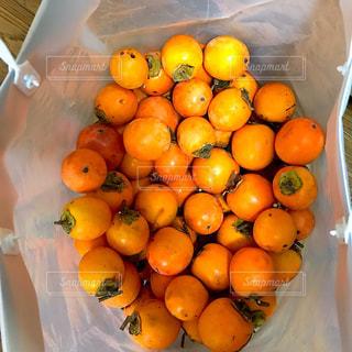 フルーツ,果物,秋の味覚,渋柿,フレッシュフルーツ,干し柿作り,柿の季節