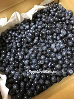 フルーツ,果物,ブルーベリー,ジャム作り