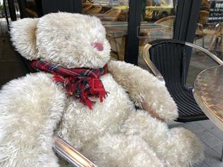 赤いマフラーが似合う熊のぬいぐるみの写真・画像素材[1699490]