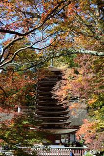 たんざん神社 - No.865711