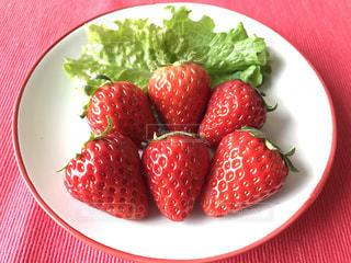 いちご,苺,フルーツ,イチゴ