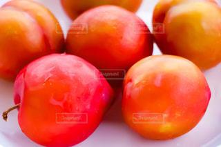 フルーツ,スモモ,プラム,サンタローザ