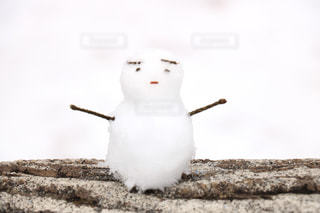 雪だるまの写真・画像素材[909111]