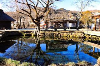忍野八海の写真・画像素材[920671]