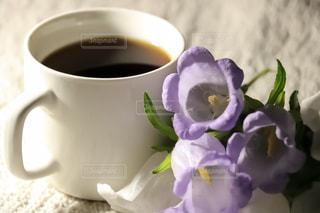 花,コーヒー,珈琲,カンパニュラ,ホットコーヒー