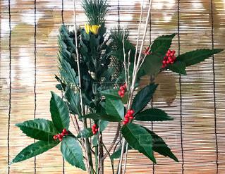 花,冬,お正月,フラワーアレンジ,生け花,お正月の花