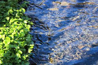 綺麗な川 - No.965849