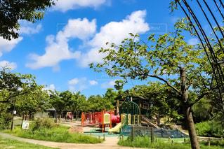 浜名湖ガーデンパークの写真・画像素材[1094521]