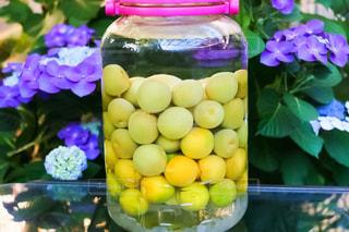紫陽花,梅雨,自家製,梅酒,果実酒,アジサイ,フォトジェニック