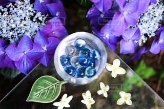紫陽花,ガクアジサイ,ビー玉,アジサイ