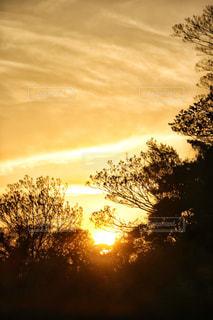 夕日が沈むときの写真・画像素材[1268863]