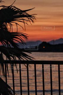 沈んだ夕日の写真・画像素材[1269064]